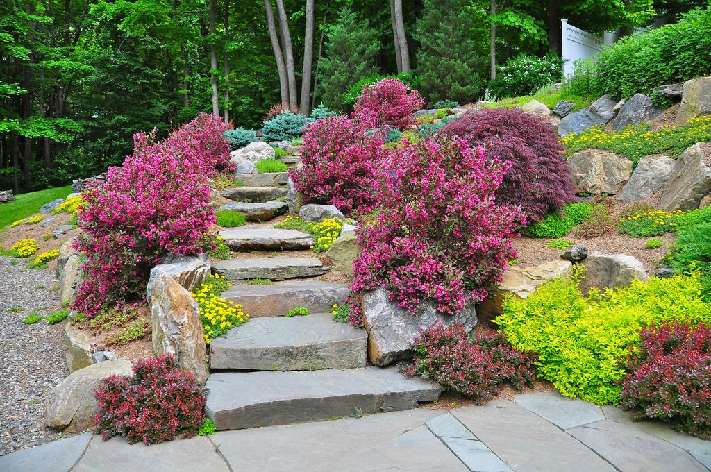 Backyard Beauty, Pound Ridge, NY