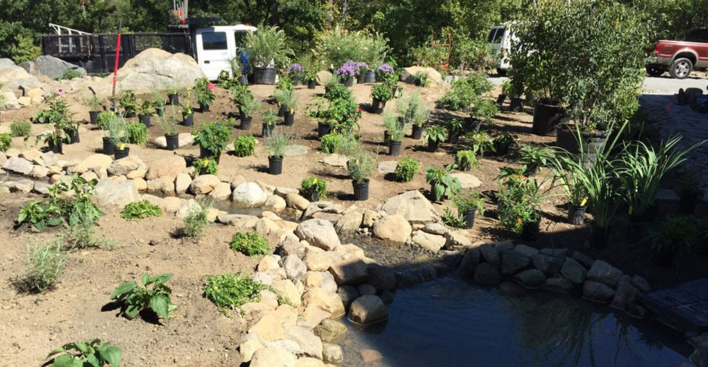 Plant Installation – Water Feature With River Rock Pathways 01