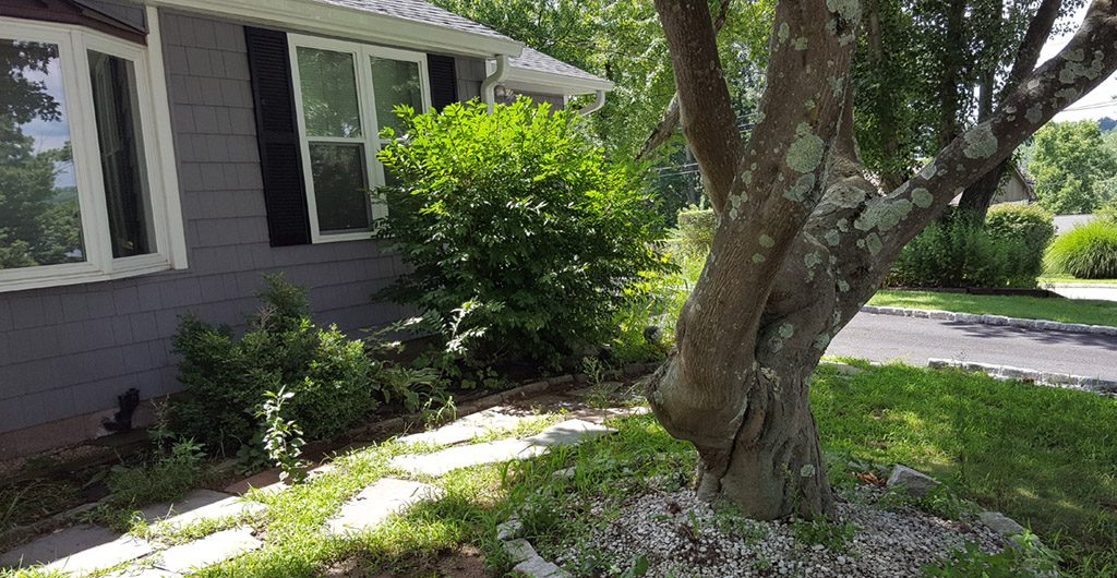 Before – Entrance Stone Walkway, Landscaping, Patio Deck & Storage Shed 06